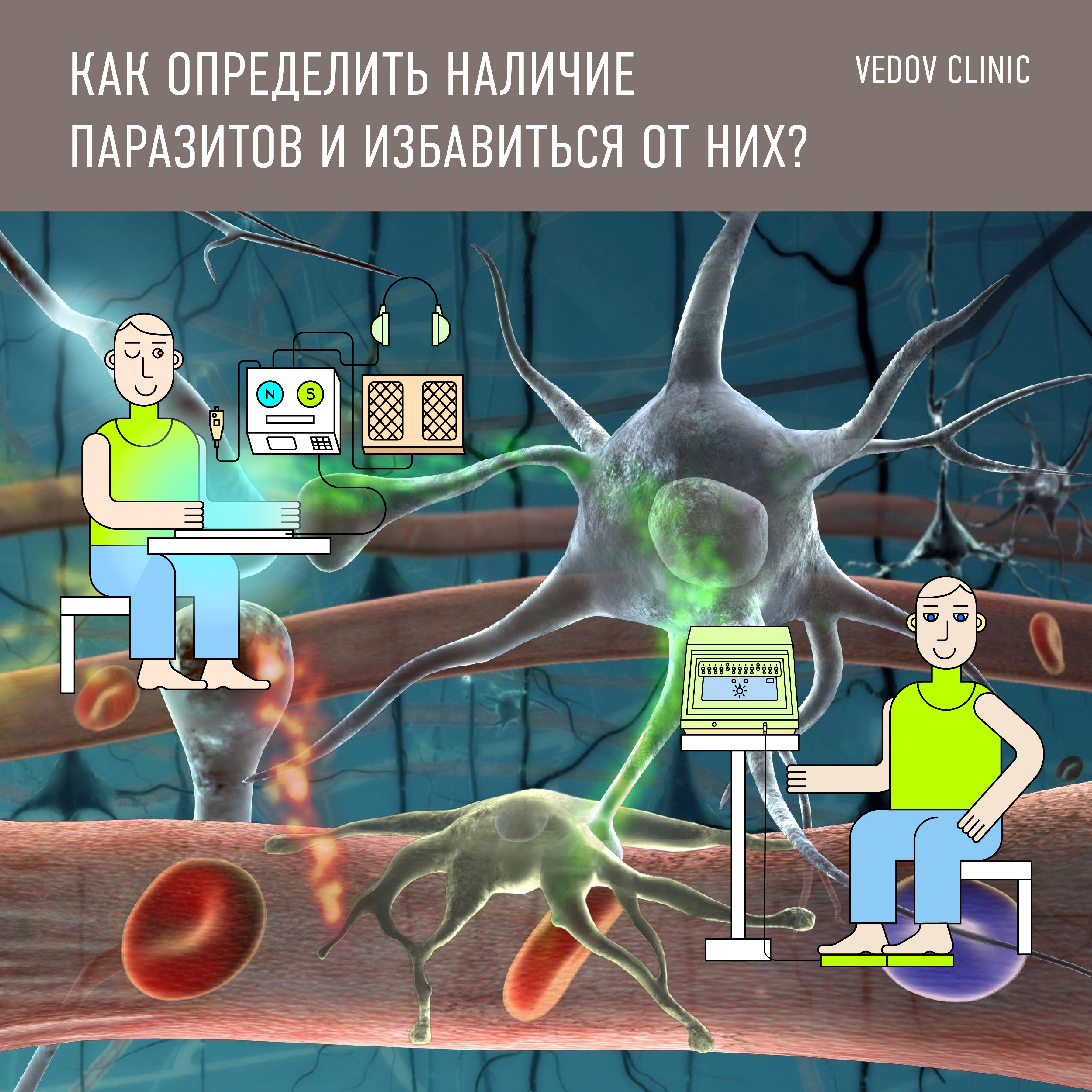 анализ на паразитов
