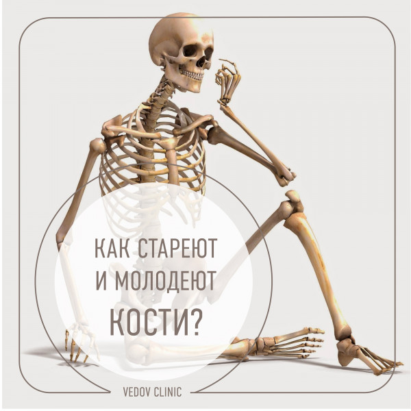 Как стареют и молодеют кости
