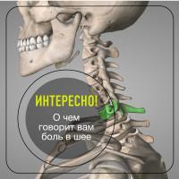 О чём говорит боль в шее?
