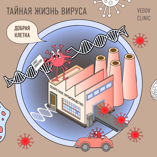 Вирус в клетке организма